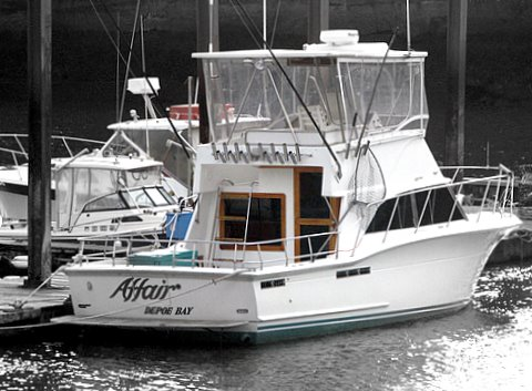 Affair charters depoe bay chamber of commerce for Depoe bay fishing charters