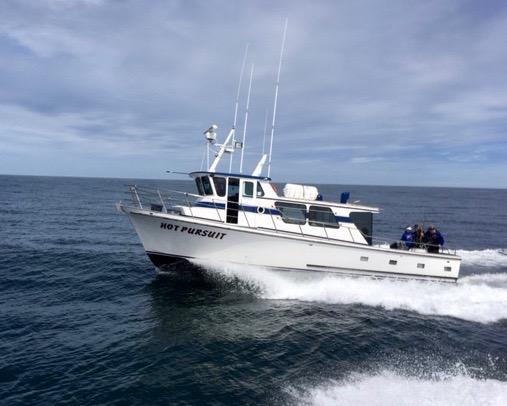 Charter fishing oregon coast for Depoe bay fishing report