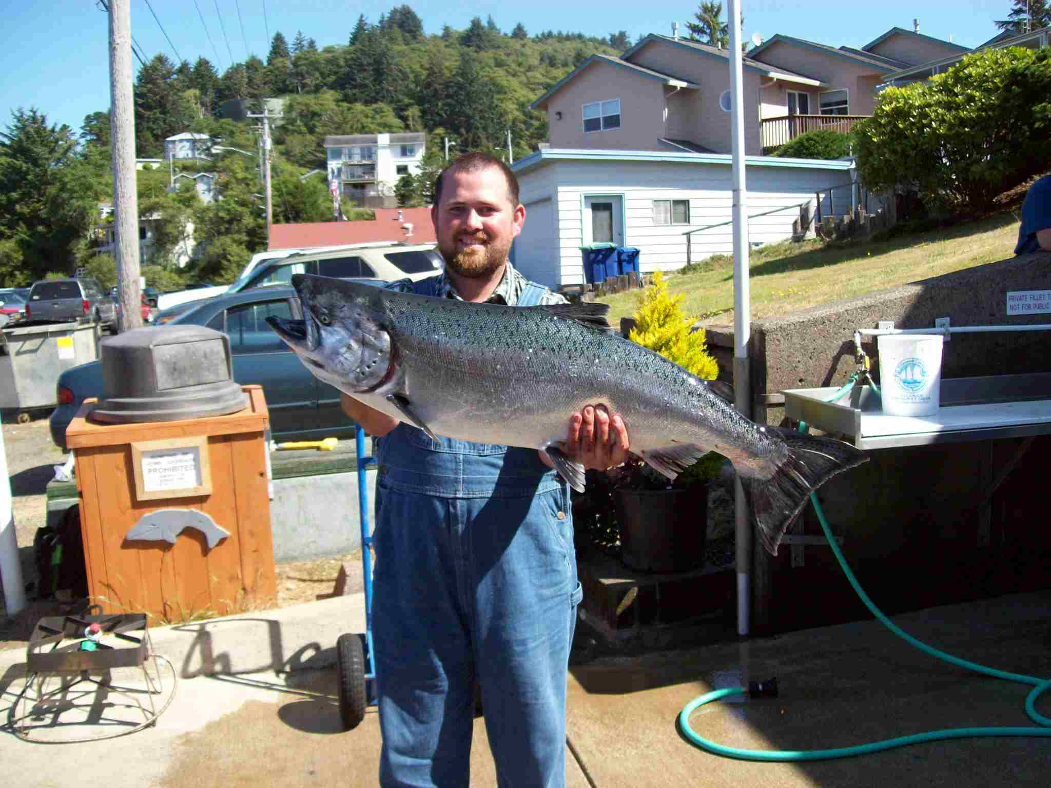 tuna fishing chartersWhat a Great Chinook
