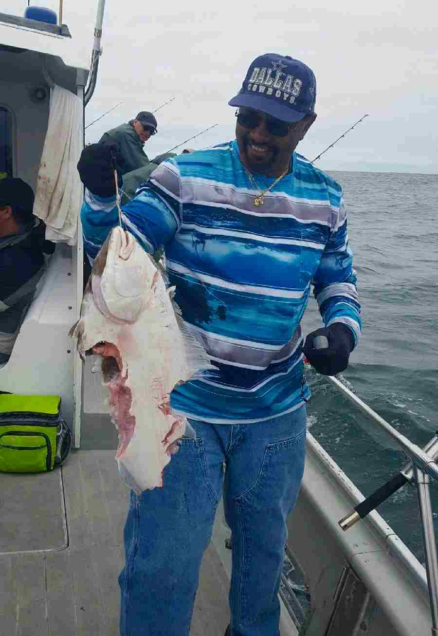 tuna fishing charters Sharks Love Halibut